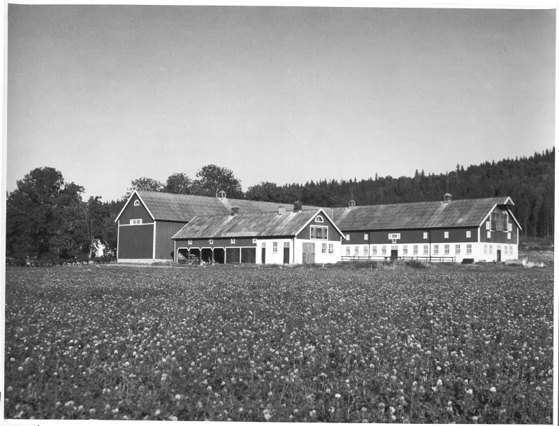 Bild4293 Cementfabriken Lantbruket