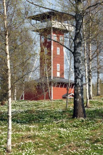 Utsiktstornet på Kinnekulle Medelplana. Foto Freddie Wendin 2013