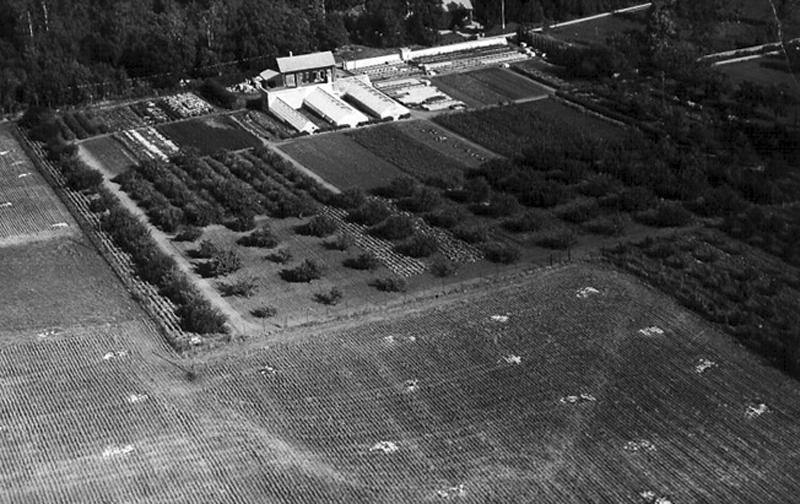 Bild 2625 Hönsäters Herrgård Hällekis Handelsträdgård