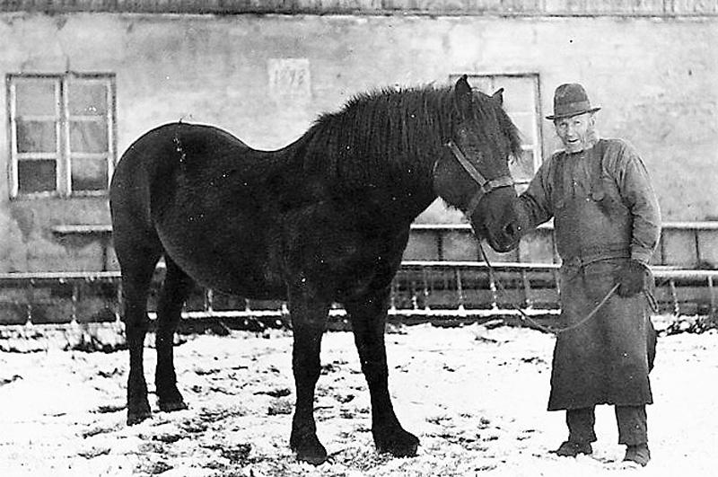 Bild 5801 Motorp Västerplana Anders Gustav Moberg med häst