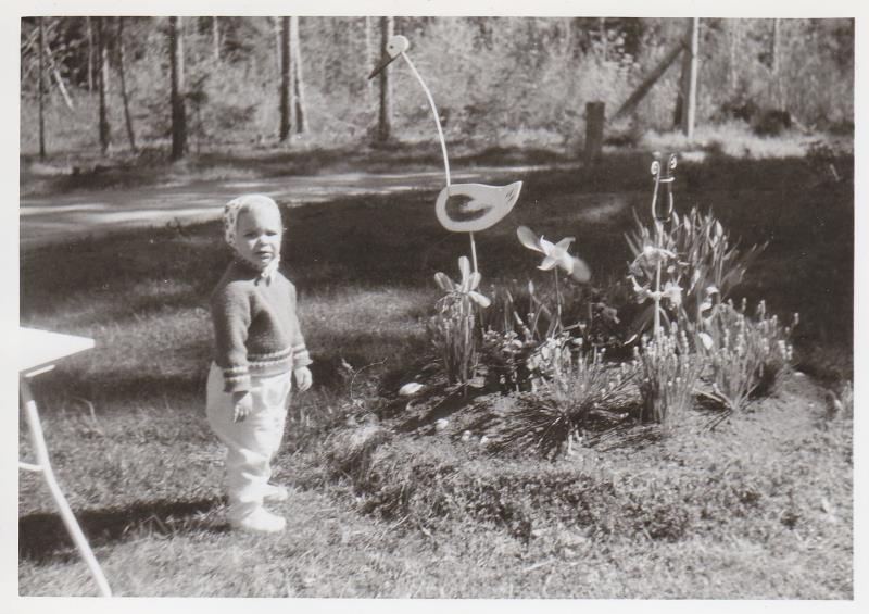 Bild5978 Skoghem 1969. Precis söder om stugan. Maria Blyh Ottersten. Dotterdotterdotter till Anton och Hanna Lind.