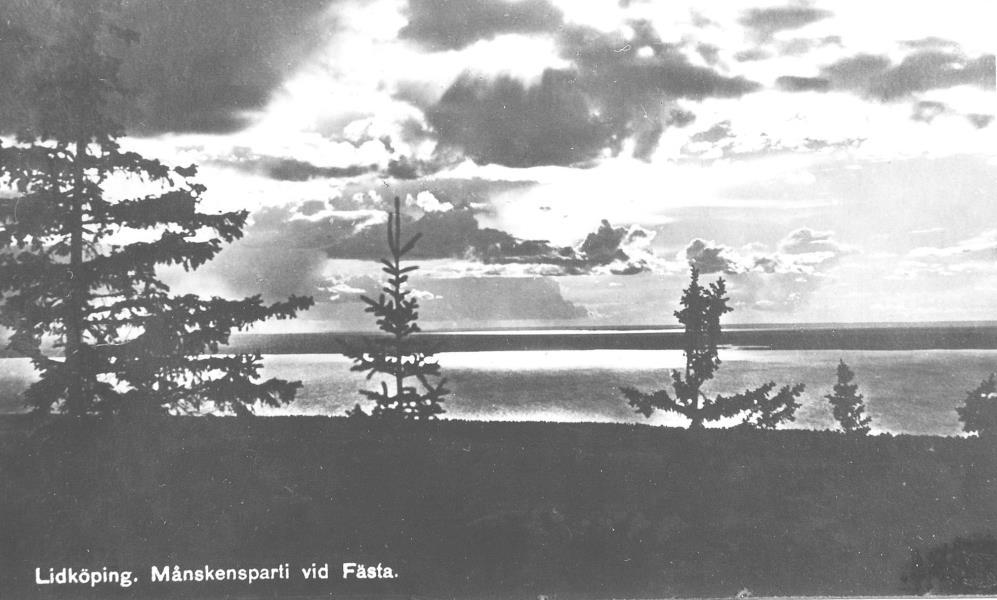 Bild3029 Artur Andersson Hällekis