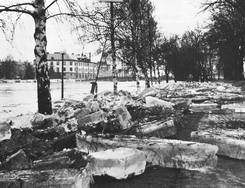 Bild3030 Artur Andersson Hällekis