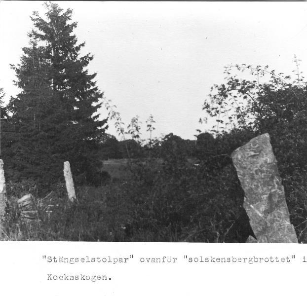 Bild3060 Artur Andersson Hällekis