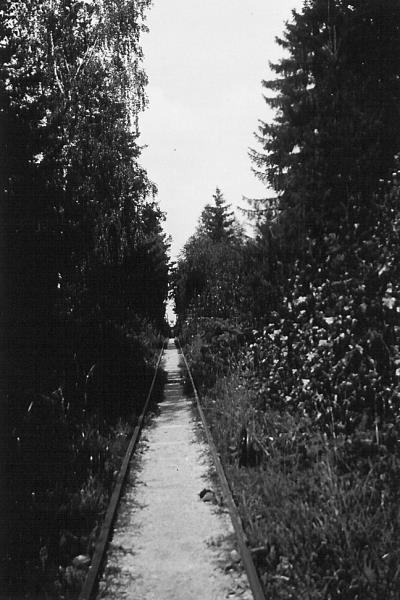 Bild3083 Artur Andersson Hällekis
